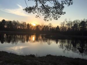 Sunset on Serenity
